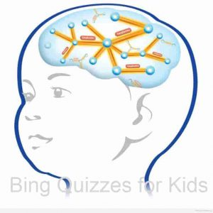 Bing Quizzes for Kids